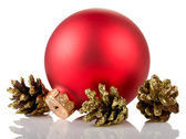 Christmas ball and cones — Stock Photo