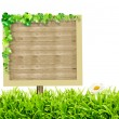 Wooden blank sign and green grass with daisies — Stock Photo