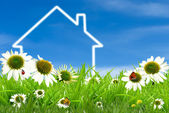 Symbol of a house on green sunny field — Stock Photo