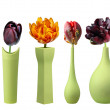 Tulips in green vases on white background — Stock Photo