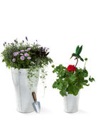 Garden flowers with shovel and decorative bird — Stock Photo