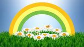 Blumen frühling und sommer background — Stockfoto