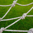 Knot rope netting with a green background. — Stock Photo