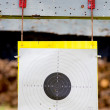 Holes in a shooting practice target. — Stock Photo