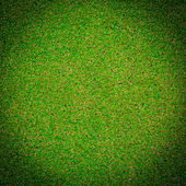 Green grass background texture — Stock Photo