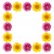 Stock Photo: Pink and yellow flowers frame isolated on white background.