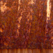 Stock Photo: Rusty Zinc grunge background
