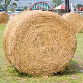 緑の草に茶色の藁 — ストック写真