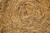 Dry straw macro shot. Background or Texture — Stock Photo