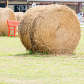 Brown Straw On Green Grass — Stock Photo
