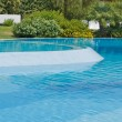 Stock Photo: Detail of a swimming pool with hedge