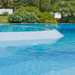 Detail of a swimming pool with hedge — Stock Photo