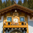 Cuckoo Clock — Stock Photo #23503071