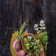 Flavors Of Herbs — Stock Photo