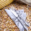 Corn Beans — Stock Photo