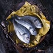 Above Sea Bream Fish Scales — Stockfoto