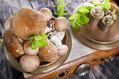 Mixed Mushrooms — Stock Photo