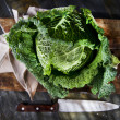 Cabbage Leaves — Stock Photo