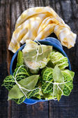Bundle Of Meat In Cabbage Leaves — Stock Photo