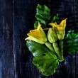 Stock Photo: Picked From The Garden, Zucchini Flowers