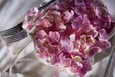 Hydrangeas for the ornament of the table  — Stock Photo