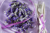 Presentation of lavender flower  — Stock Photo