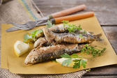 Fried anchovies  — Stock Photo