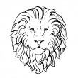 Head of lion — Stockvectorbeeld