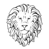 Head of lion — Stock Vector