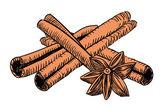 Drawn vintage cinnamon — Stock Vector