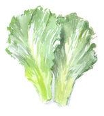 Watercolor green salad — Stock Photo