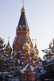 Santa cruz da catedral — Foto Stock