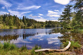 Tarn hows — Stockfoto