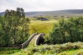 Small Packhorse Bridge in a Moorland Setting — Stock Photo