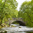 Stock Photo: Skelwith Bridge