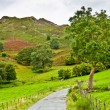 Stock Photo: Pathway under Loughrigg Fell