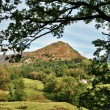 Stock Photo: View of Helm Crag, framed within leafy branches