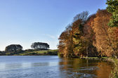 Trees at Talkin Tarn, on an Autumn day. — Stock Photo