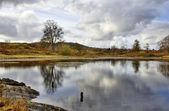 Podnet Tarn in the Winster Valley, Cumbria — Stock Photo