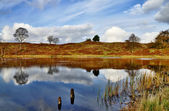 Reflections in Podnet Tarn, the Winster valley — Stock Photo