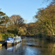 Blue barge moored on the Lancaster Canal — Stock Photo