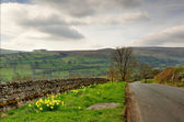 Country lane in the Yorkshire Dales — Stock Photo