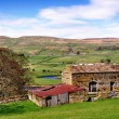 Stock Photo: Barn and trees in Yorkshire Dales