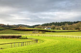 View of Cartmel Racecourse — Stock Photo