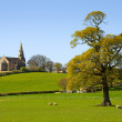 View of Bardsea Church with tree — Stock Photo