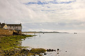 View of Ravenglass shoreline — Stock Photo