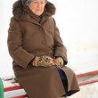 Stock Photo: Winter portrait of the old woman