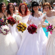 Bride Parade — Stock Photo #25939033