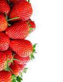 Fresh ripe perfect strawberry — Stock Photo