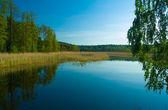 Morning lake — Stock Photo